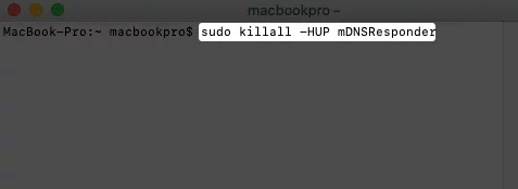 Mac Terminal with sudo killall -HUP mDNSResponder entered