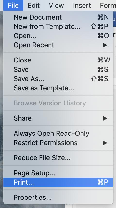 Mac File Menu opened